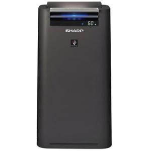 Очиститель воздуха Sharp KC-G41RH